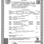 Spanish Birth Certificate Translation | Burg Translations pertaining to Spanish To English Birth Certificate Translation Template